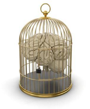convicted brain